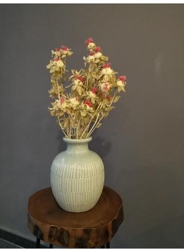 Kuru Çiçek Deposu Aspir Çiçeği (20 Kafa) Krem , Kuru Çiçek Krem